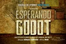 ESPERANDO GODOT