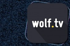 WOLF . TV