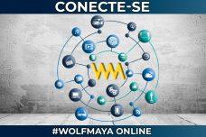 [:pt]WOLF MAYA ONLINE, CONECTE-SE! [:]