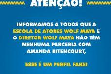 [:pt]ATENÇÃO!!! CUIDADO COM PERFIS FAKES NA INTERNET.[:]